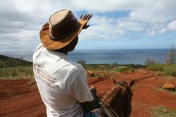 Makaha Valley Riding Stables