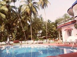 Palm View Inn