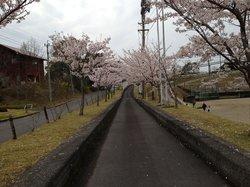 Maruoka Park