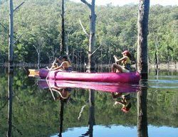 Kangaroo Valley Safaris