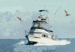 Guerita Sportfishing