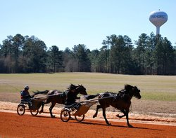 Pinehurst Harness Track