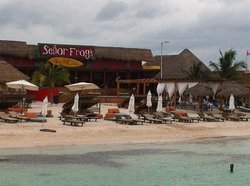Senor Frogs Costa Maya