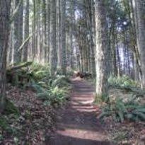 Tour Cascadia