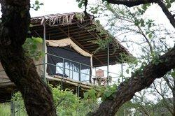 Ngorongoro Wildcamp