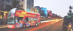 CitySightseeing Miami