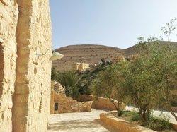 view to Taybeh village