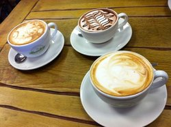 Roasters Coffee Company