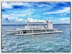 Ocean Dreamer Island Tours