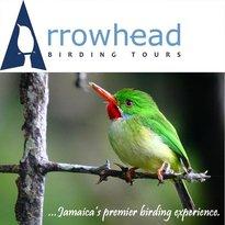 Arrowhead Birding Tours