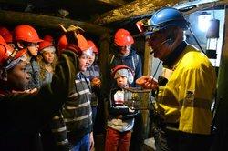 State Coal Mine