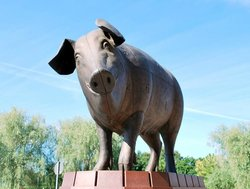Sculpture Bronze Pig