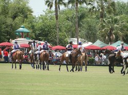 Sarasota Polo at Lakewood Ranch