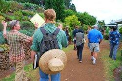 Taste of Maui Island Tours