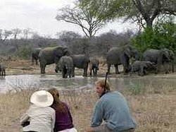Transfrontiers Wildlife Walking Safaris