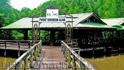Kota Kinabalu City Bird Sanctuary