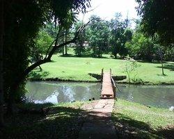 Igapo Lake