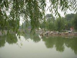 Niujiao River