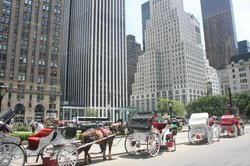 New York Carriage Company