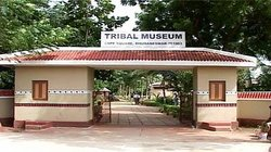 Museum of Tribal Arts & Artifacts