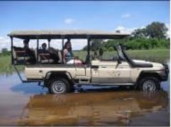 Mosu Safari Tours