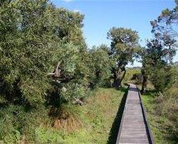 Rotary Walk Trail