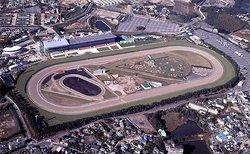 Chukyo Horse Race Track