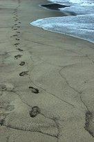 Ohama Coast