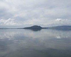 Mokoia Island Wai Ora Experiences
