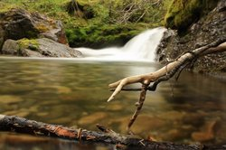 Ribbon Creek Trail