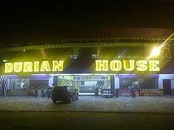 Durian House