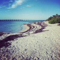 Historic Virginia Key Beach Park