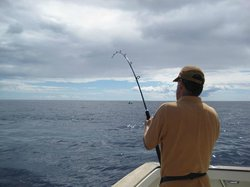 Madeira Sport Fishing