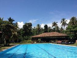 Blick auf den (leider viel zu warmen) Pool und das dahinter liegende große Yoga Shala.