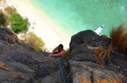 Spidermonkey Climbing