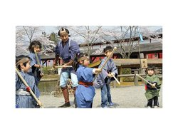 Nikko & Ninja (Edo Wonderland) 1-Day Tour