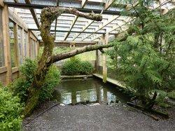 Prince Rupert Wildlife Rehab Shelter