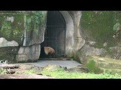 Chongqing Dayuan Cave