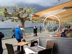 Pizzeria-Cafe La Perla