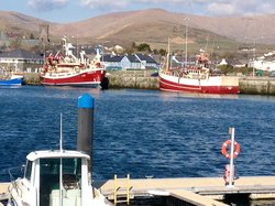 Dingle harbour (63378718)