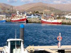 Dingle harbour (63378718)