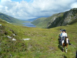 Highlands Unbridled Trail Riding & Trekking Centre