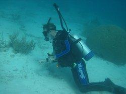 Diver's Request