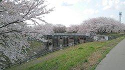 Kajikawa Chisui Memorial Park