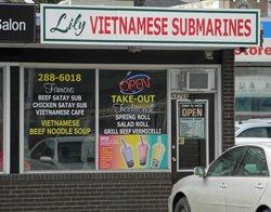 Lily Vietnamese Submarines