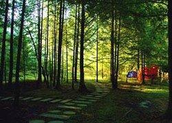 Shizhu Huangshui Forest Park
