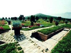 Qin Xianyang Palace Site Museum