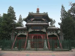 Jinlong Temple Forest Park