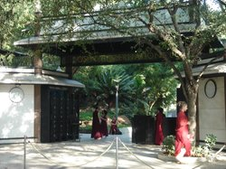 Pandit Nehru Botanical Gardens