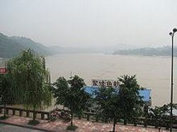 Yangtze River Forest Park of Dongxing